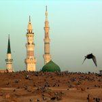 سطور من النور بمناسبة وفاة النبي الأكرم (ص) وشهادة الإمام الحسن المجتبى(ع)
