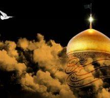 سطور من النور بمناسبة شهادة الإمام الرضا×